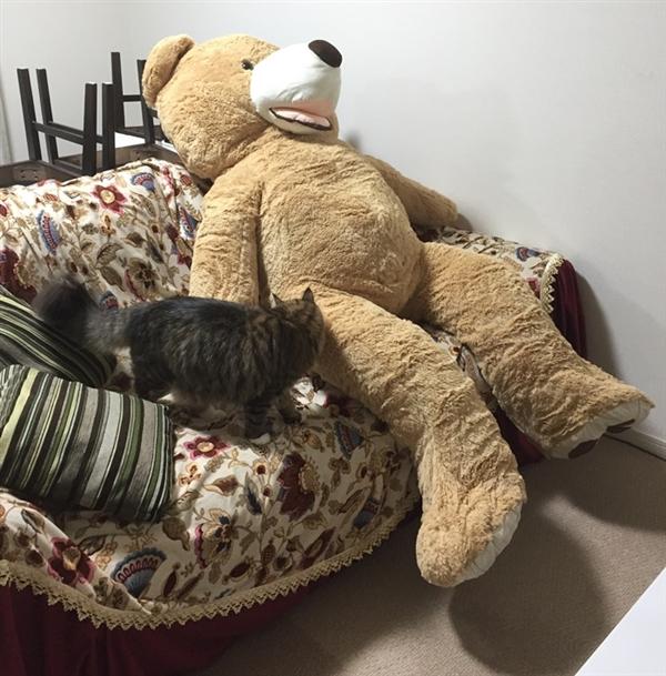 巨大なクマのぬいぐるみ